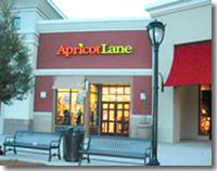 Apricot Lane Franchise Review